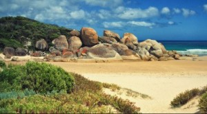 Melbourne what to do Wilsons Promontory